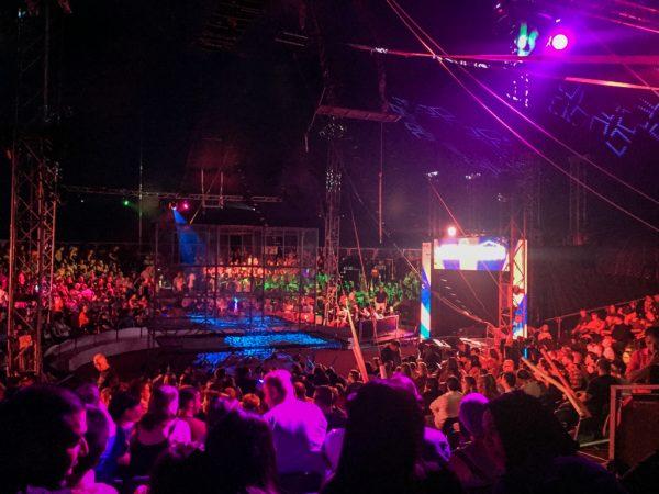 moscow circus, johannesburg